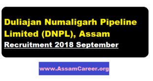 Duliajan Numaligarh Pipeline Limited (DNPL), Assam Recruitment 2018 September - Assam Career